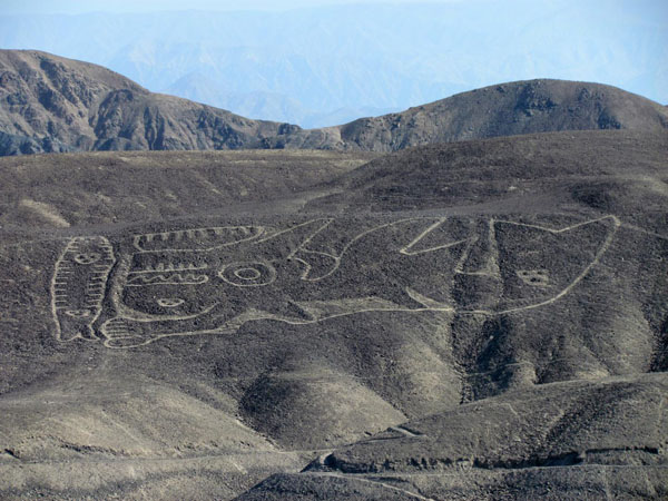 Ancient Nazca Line Pattern Confirmed to Depict Killer Whale
