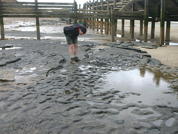 Million-Year-Old Human Footprints Found in the UK