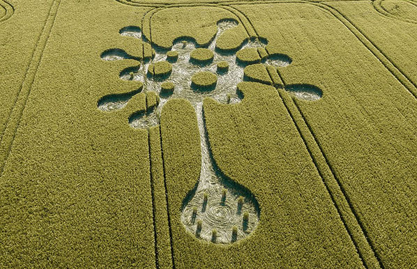 Crop Circle 'Shaped Like Virus' Discovered in Wiltshire Field