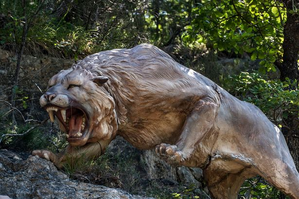 Scientists Attempt to Clone Extinct Ice Age Lion from Mummified Remains