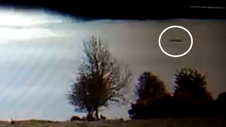 Sizeable Anomaly Spotted on Loch Ness Webcam