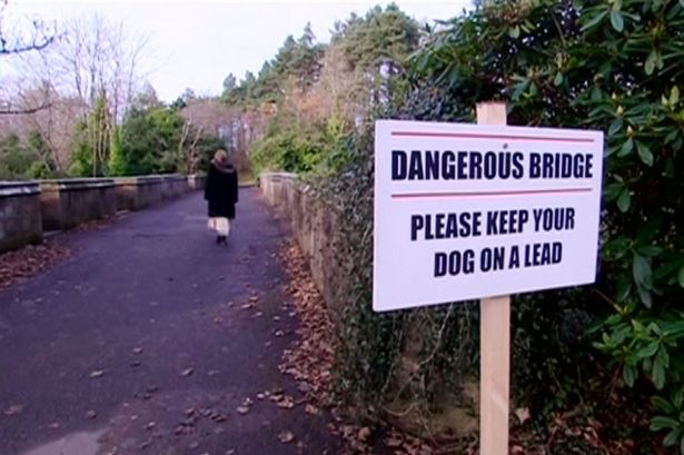 Mystery as 600 Dogs Jump from 'Haunted Suicide Bridge'