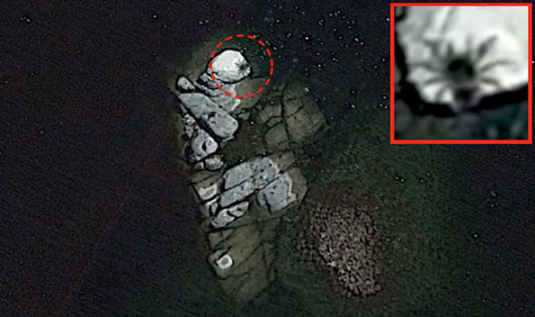 Bus-Sized 'Spider' Discovered on Google Earth Imagery