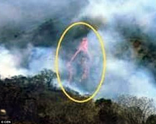 Priest Captures Image of The 'Virgin Mary' in a Forest Fire