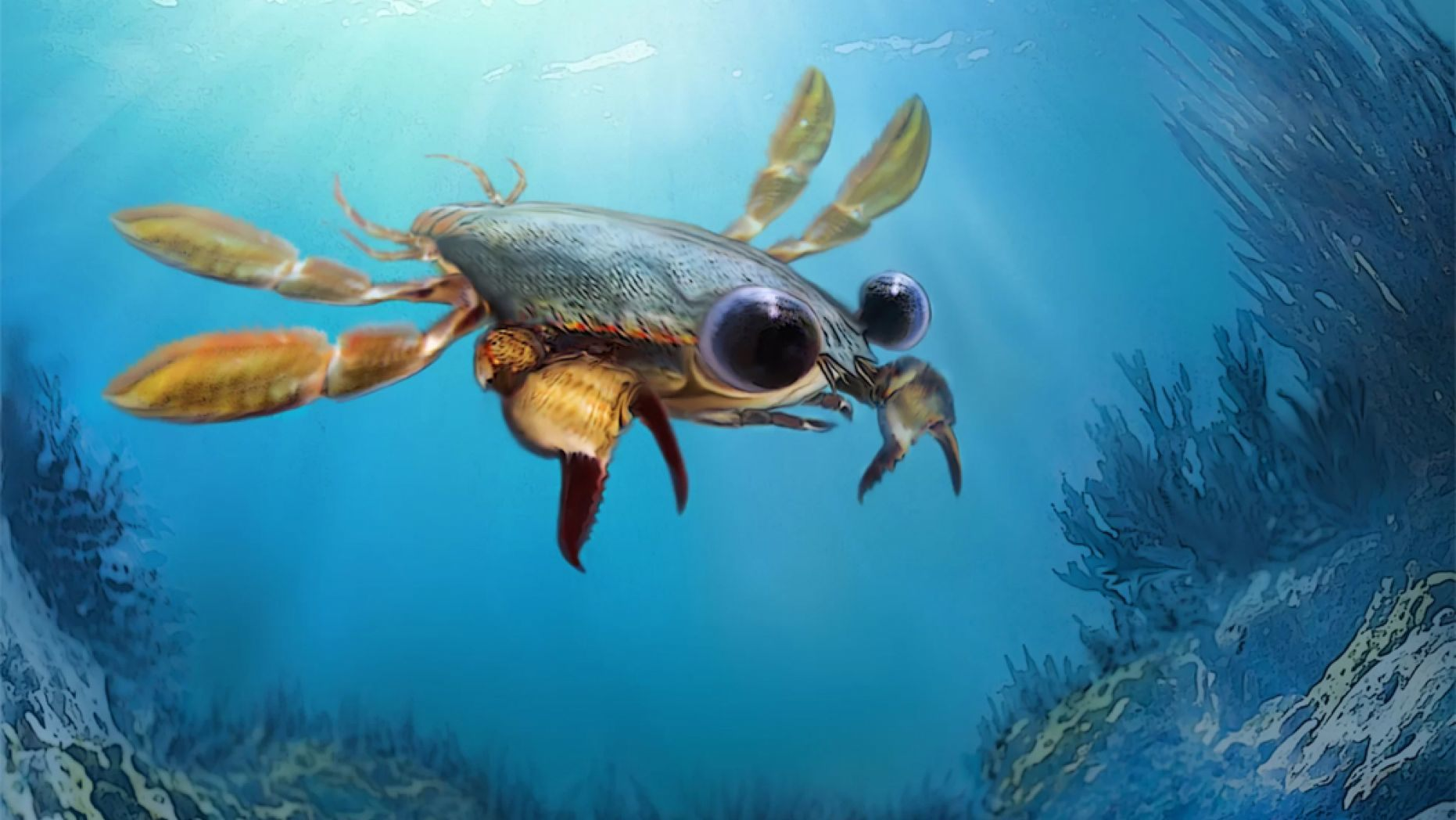 'Utterly Bizarre' Chimera Crab Fossil Discovered