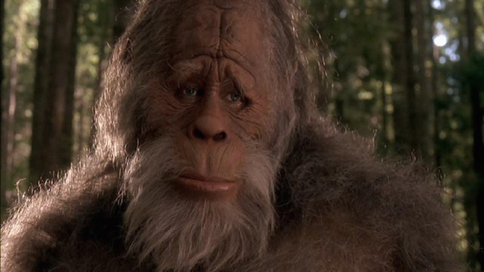 Woman Sues California Over Failure to Recognise Sasquatch