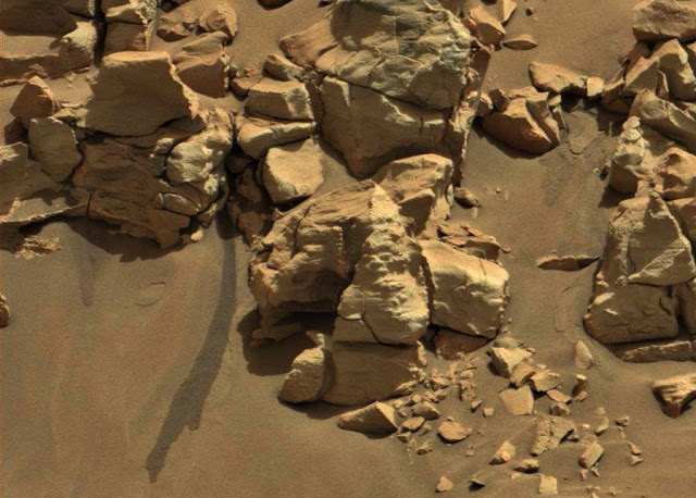 Did NASA Ignore Rover Photograph of Water on Mars?