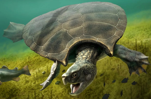 Scientist Claims Loch Ness Monster Could Be Ancient Sea Turtle