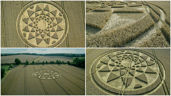 Farmer Inundated with Visitors After 200ft Crop Circle Appears