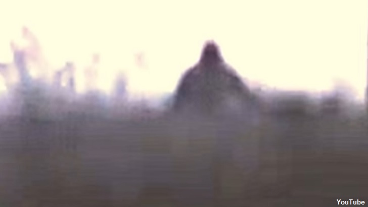 Bigfoot Chases Car in Russia?